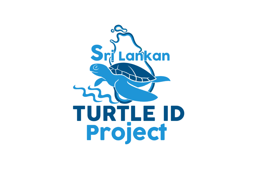 turtle id project